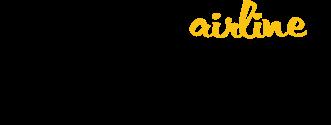 Авиакомпания Bees Airline билеты на чартер официальный сайт